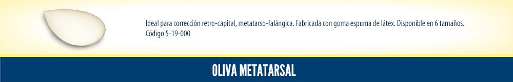 Oliva metarsal